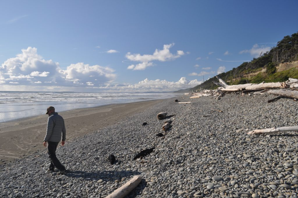 South Beach, Olympic Peninsula Washington, USA