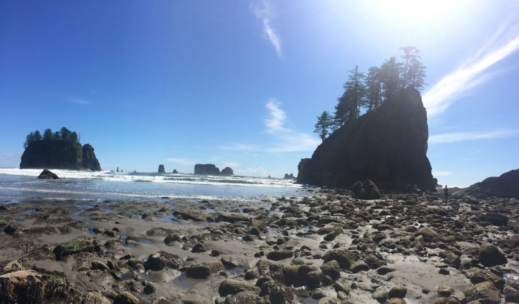 La Push, Olympic Peninsula, Washington, USA, sea stacks