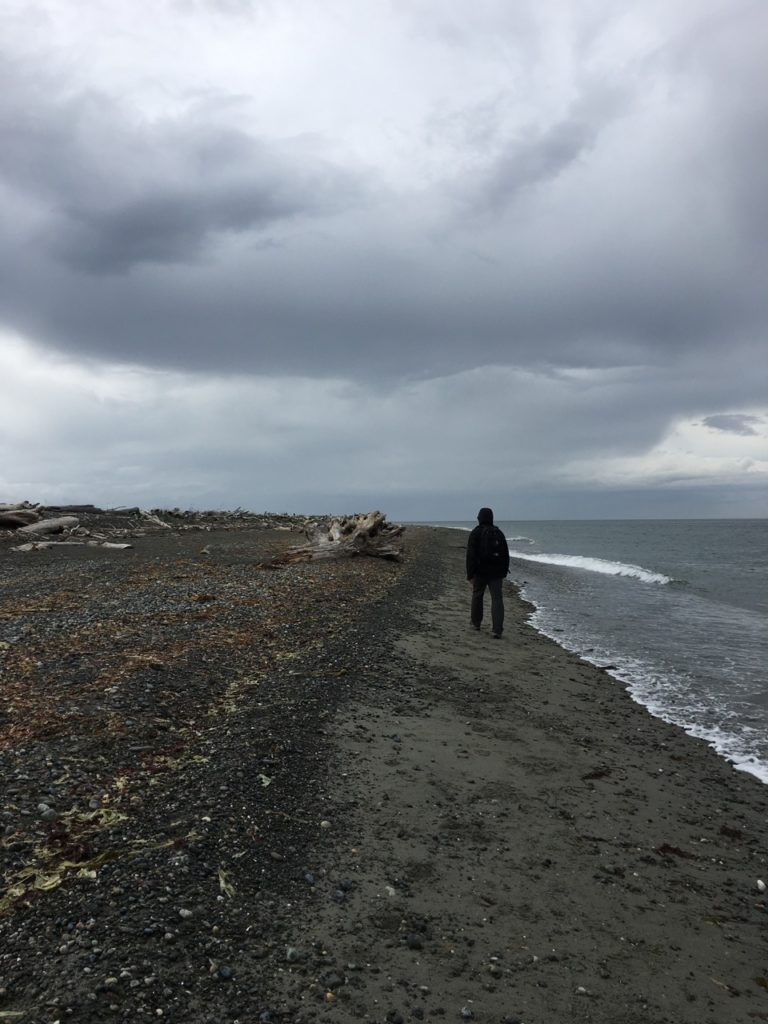 Walking the Dungeness Spit in Washington
